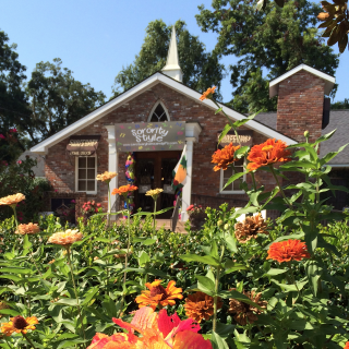 Sanctuary Home And Gifts in Louisiana