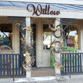 Willow in Texas