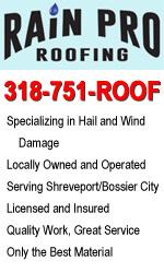 Rain Pro Roofing, LLC