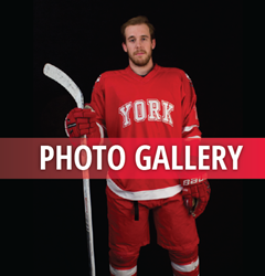 Gallery_hockey