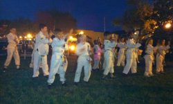 summer camp lakeland fl kung fu sifu och wing chun