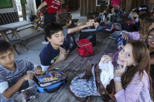 kids holiday day camps zoo