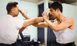 Wing Chun Bui Jee Thrusting Fingers