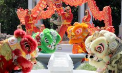 FLORIDA CHINESE LION DANCE sifu-och-wing-chun-chinese-new-year-lion-dance