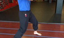 Wing Chun Stance, Kung Fu Structure, Footwork, Wing Chun Stance, Wing Chun Kung Fu