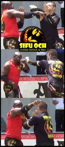 Tampa Bay Asia Fest Sifu Och Wing Chun Kung Fu entertainment
