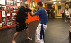 Intercepting Fist, Wing Chun Intercepting Fist, Intercepting Fist Kung Fu, Straight Punch, WIng Chun Straight Punch