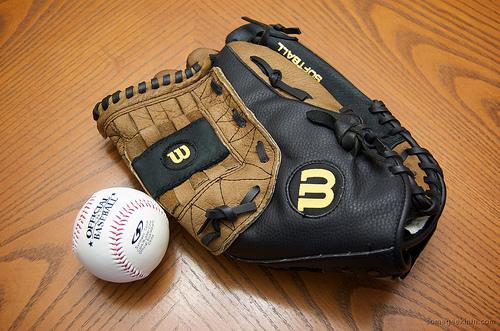 baseball mitt photo