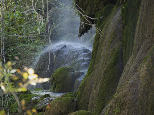 Gorman Falls photo