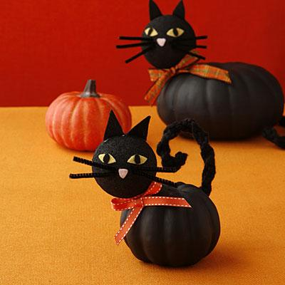pumpkin-cats-l