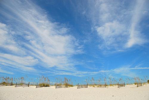 gulf shores photo