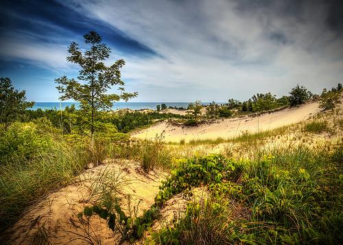 indiana sand dunes photo