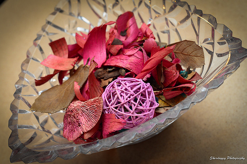 potpourri crockpot photo