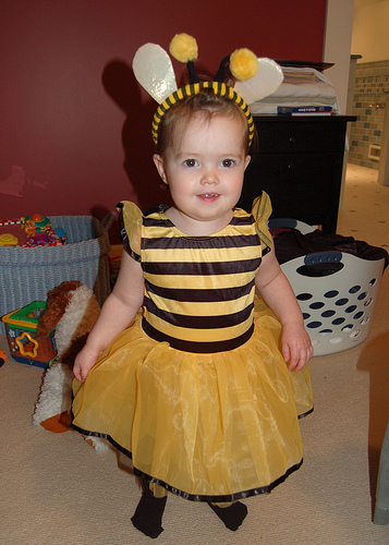 bee costume photo