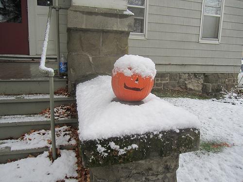 snow halloween photo