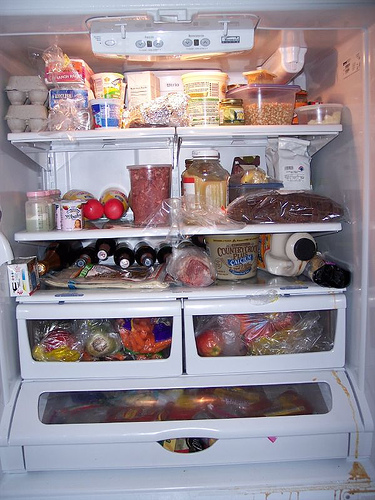 fridge photo