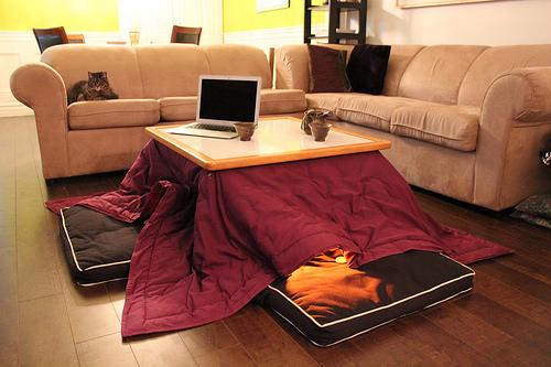 kotatsu photo