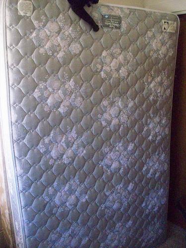 mattress photo