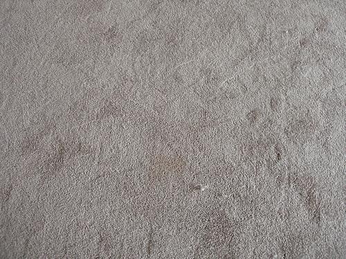 carpet stain photo