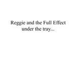 Cover-reggie_and_the_full_effect-under_the_tray_large