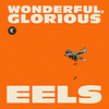 Eels_wonderglor_cover_medium