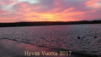 HyvC3A4C3A4Vuotta2017.jpg