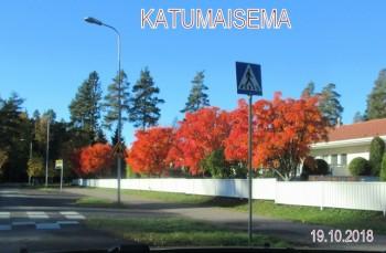 Katumaisema20181019.JPG