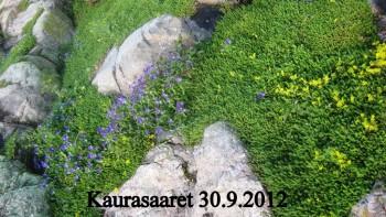 Kaurasaaren+kukat+20120930.jpg