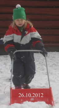 Lila+lumitoissa+20121026.JPG