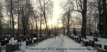 Naantalinhautausmaa20170111.jpg