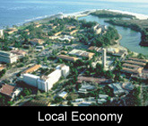Local Economy