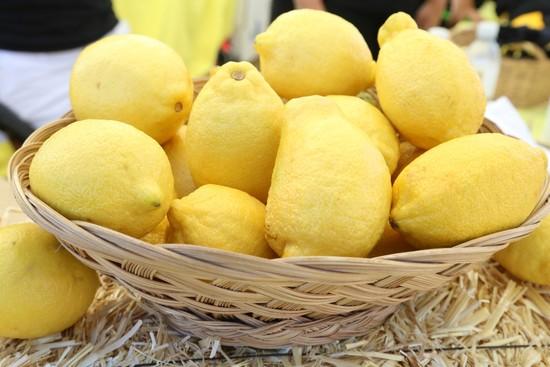 Sponsor the 2014 Lemon Festival