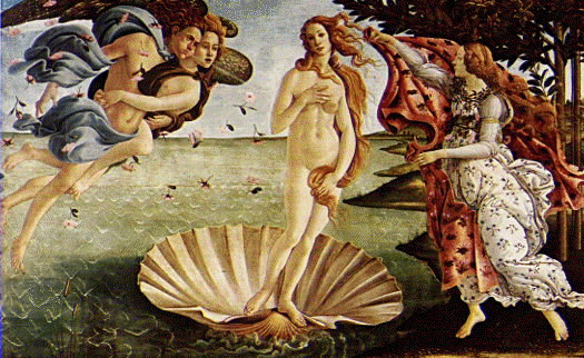 woman in shell