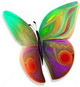 butterly5