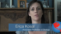 Video Blog Testimonials - Erica, Associate Professor of Biology