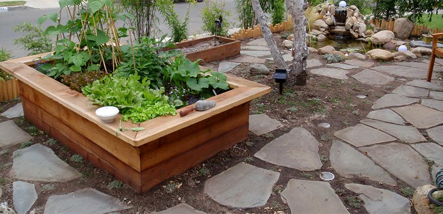 Planting & Design
