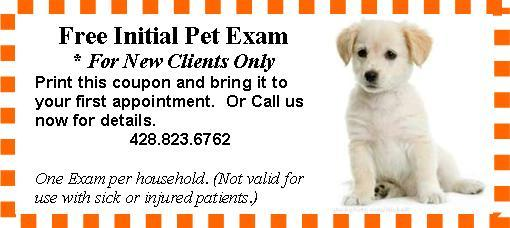 Free Vet Pet Exam