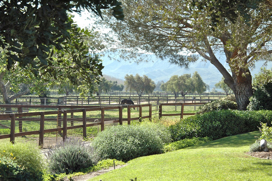 FOR SALE: Walking Beam Ranch  Santa Paula Calif