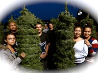 Lompoc Teens Help Xmas Tree Distribution