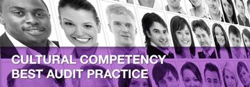 Sjc-services-cultural-competency-audit