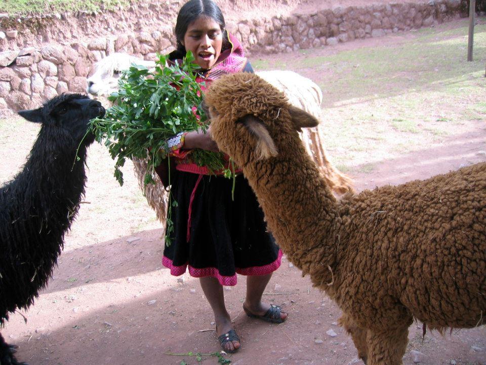 Perú, beyond Machu Picchu - image 3 - student project