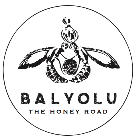 Balyolu Logo Design - image 1 - student project
