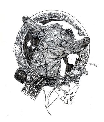 Dead Man's Bones - image 3 - student project