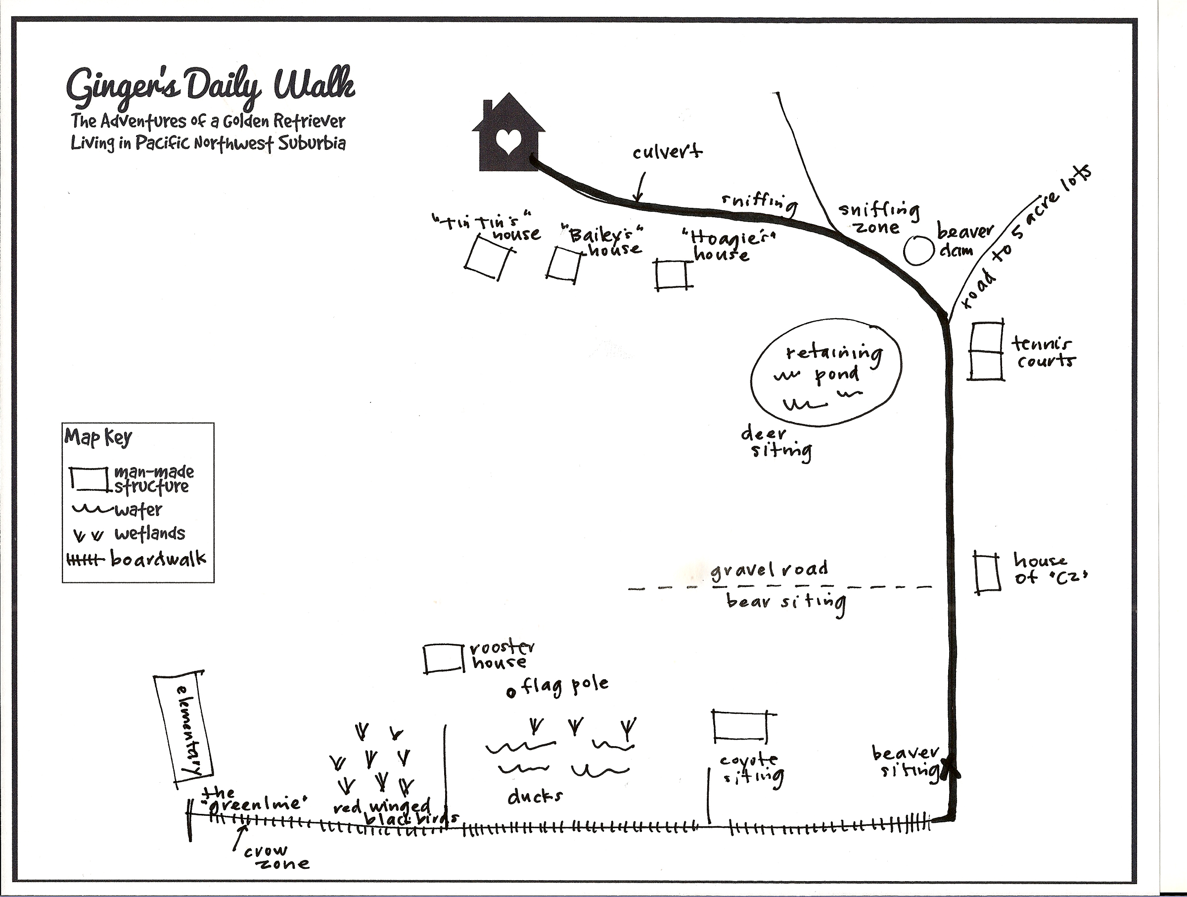 Ginger's Daily Walk - Adventures of a Golden Retriever in Pacific NW Suburbia - image 18 - student project