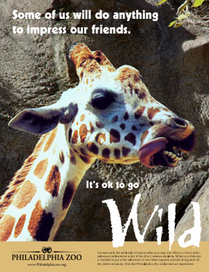 Wild Zoo - image 1 - student project