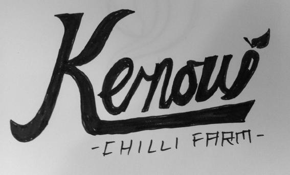 Kernow Chilli Farm - image 8 - student project