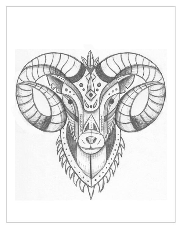 Bighorn Sheep - image 2 - student project