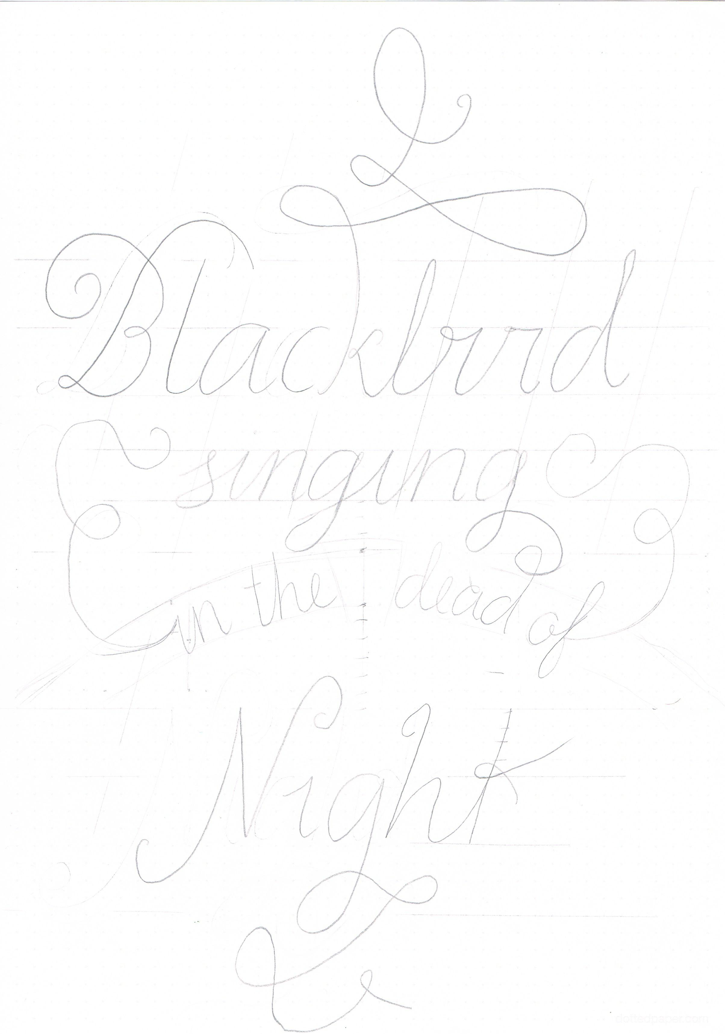 Blackbird. - image 2 - student project