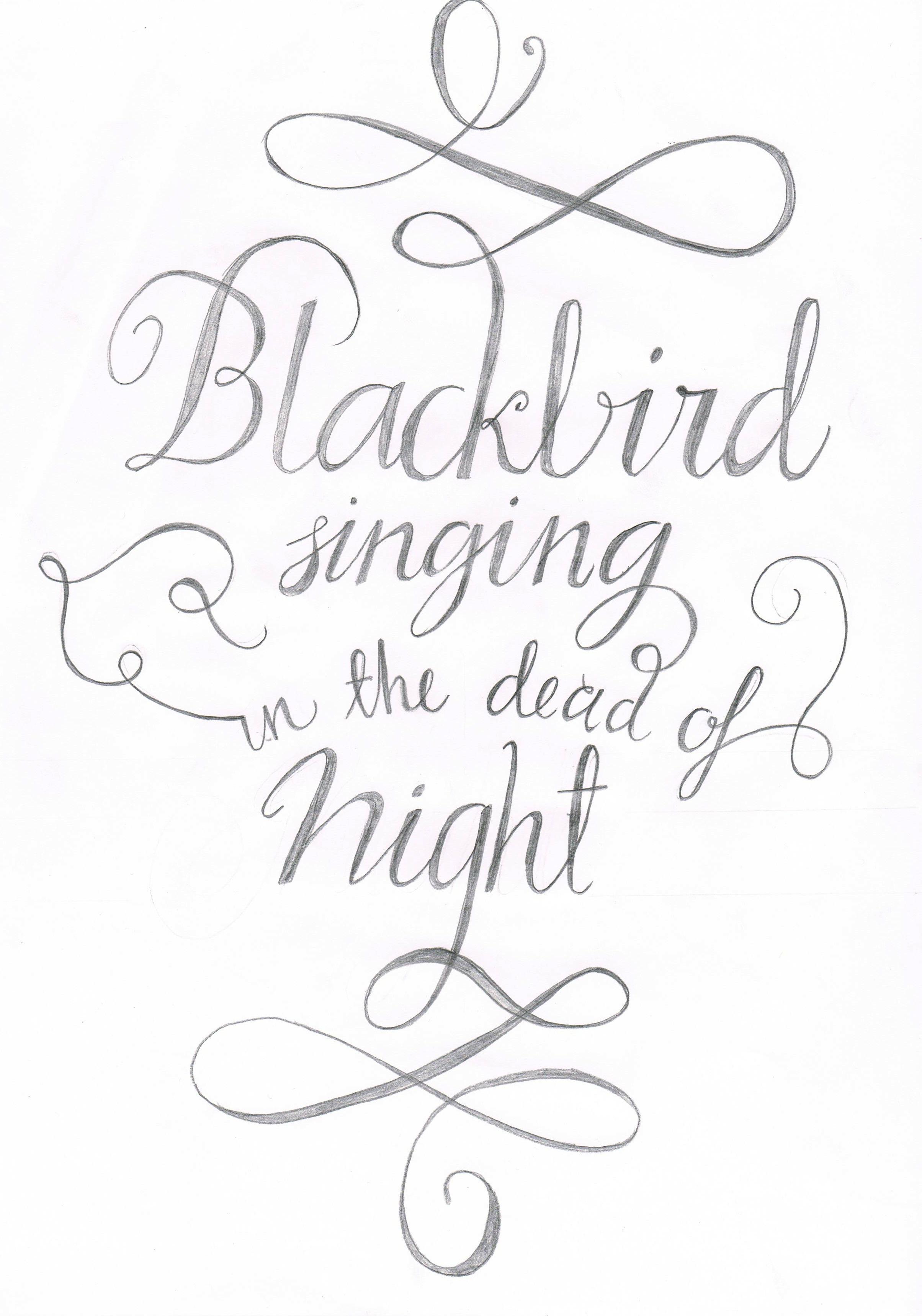 Blackbird. - image 3 - student project
