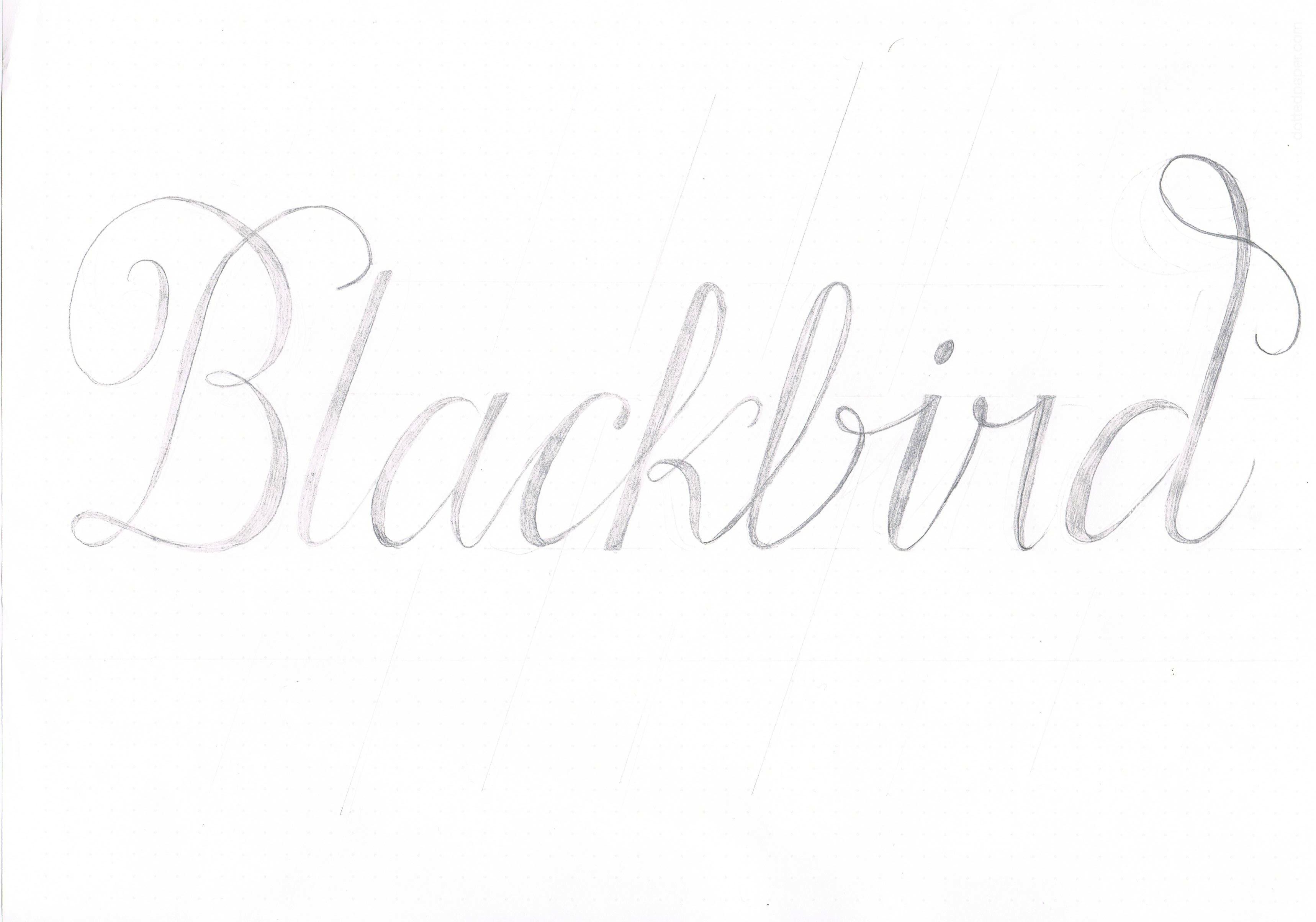 Blackbird. - image 1 - student project
